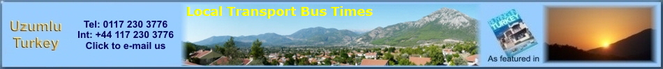 Local Transport Bus Times